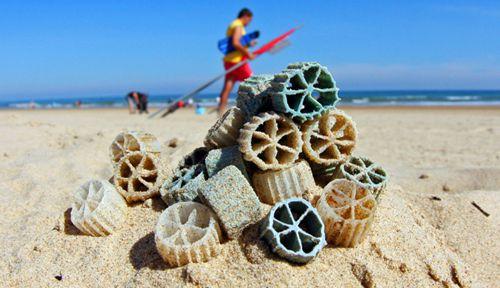 Bio-médias retrouvés sur la plage