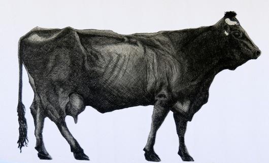 Als Künstler gebe er dem Tier so seine 'Ganzheit' zurück