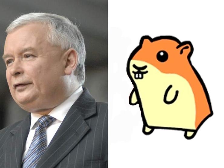 Vous voyez la ressemblance ?