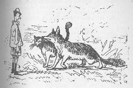 Grazie a Pinocchio il gatto e la volpe sono diventati lo stereotipo dei falsi amici truffatori