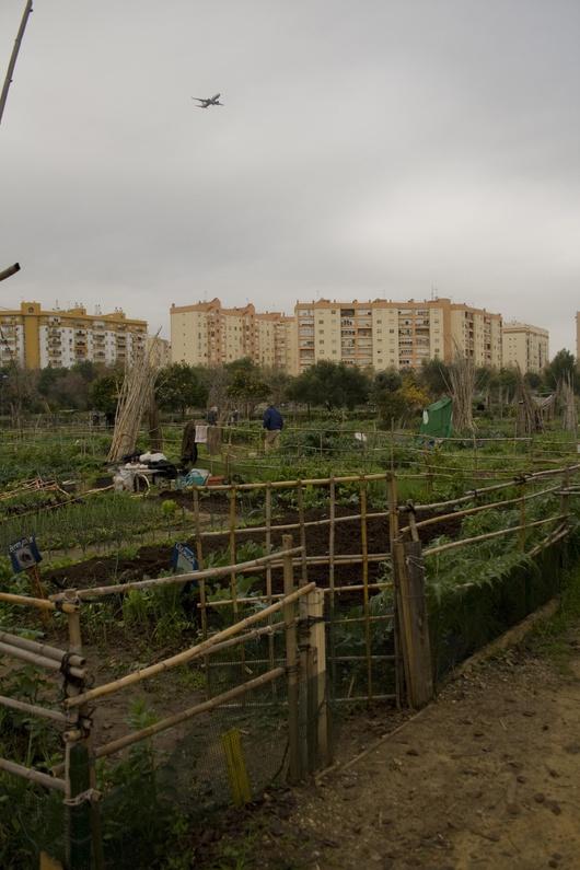 Der Stadtgarten von Miraflores entstand 1989.