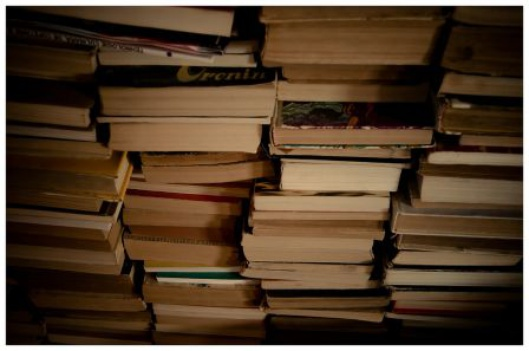 Stacks of books (cc) Andrei.D40