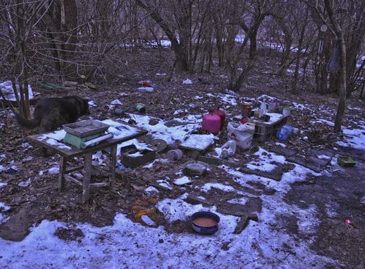 Miejsca te są źródłem zarazków, które zostały chwilowo zamrożone tylko z powodu na zimę.