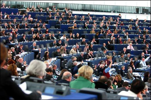 (zdj.: Parlament Europejski)