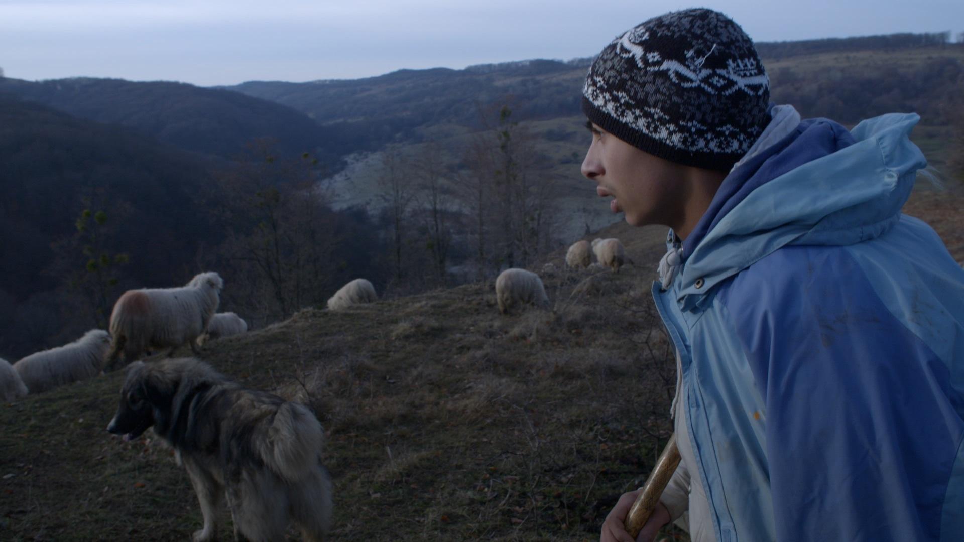 Andrei, documentaire Ceux qui restent