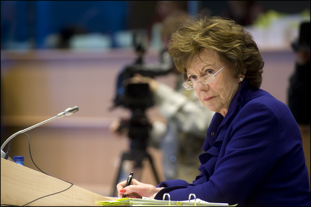 Neelie Kroes (telecoms and internet regulation commissioner): 'the hard-nosed one'
