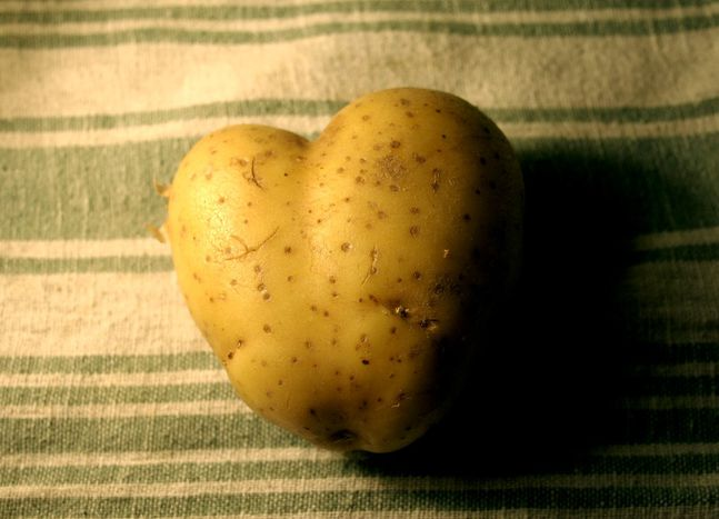 Image for Le lundi des patates