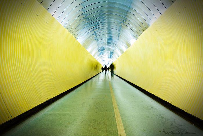 Image for Il drammadell'immigrazione all'ingresso dell'Eurotunnel