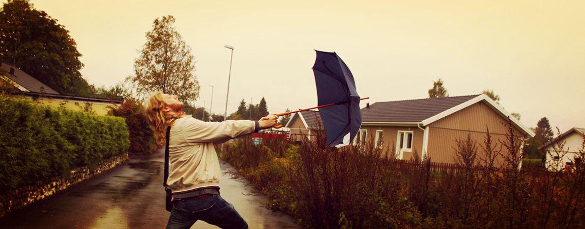 Image for Wirbelsturm-Sexismus: Wer Wind sät, wird Sturm ernten