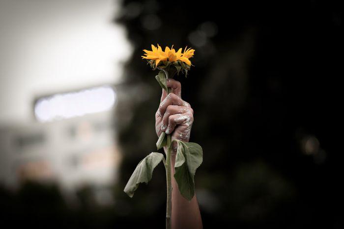 Image for Génération perdue : « je suis précaire parce que c'est mon destin »