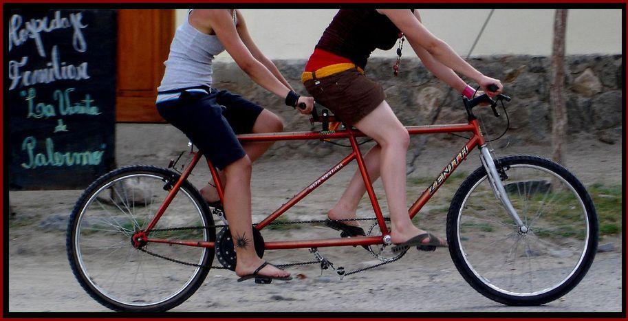 Image for Cinco bicis y una vuelta al mundo a pedales