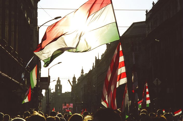 Image for Hungarians against Orbán demand for Democracy