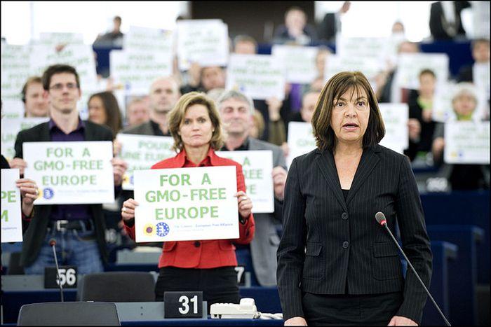 Image for La clonazione nei nostri piatti : l'UE segue le orme degli Stati Uniti ?
