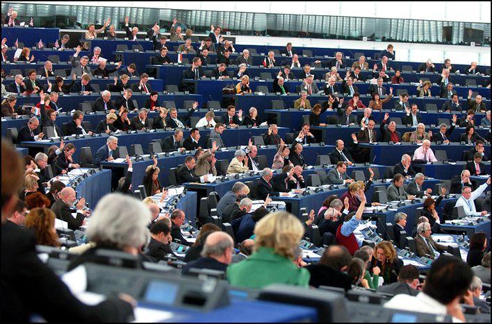 Image for Des candidats hors normes aux Européennes