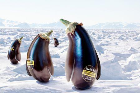 Image for La Guerra del hielo.