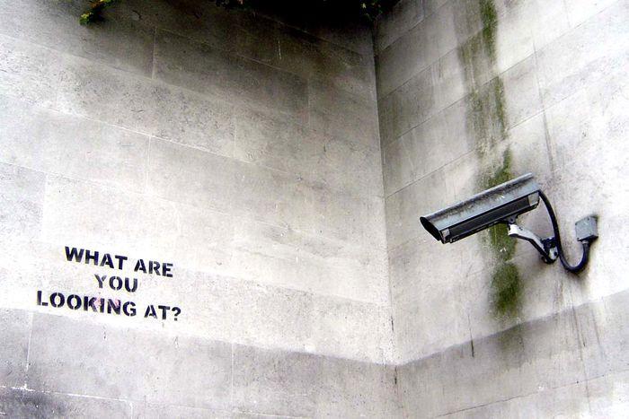Image for Qwant, l'alternativaeuropeaaGoogle