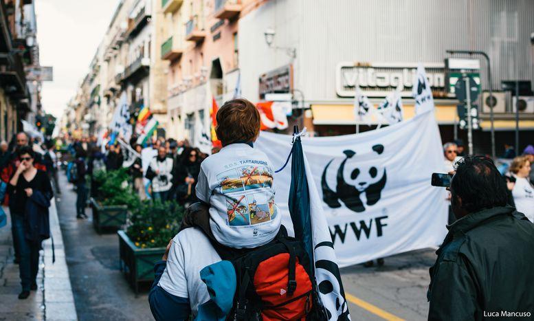 Image for In marcia per il clima a Palermo