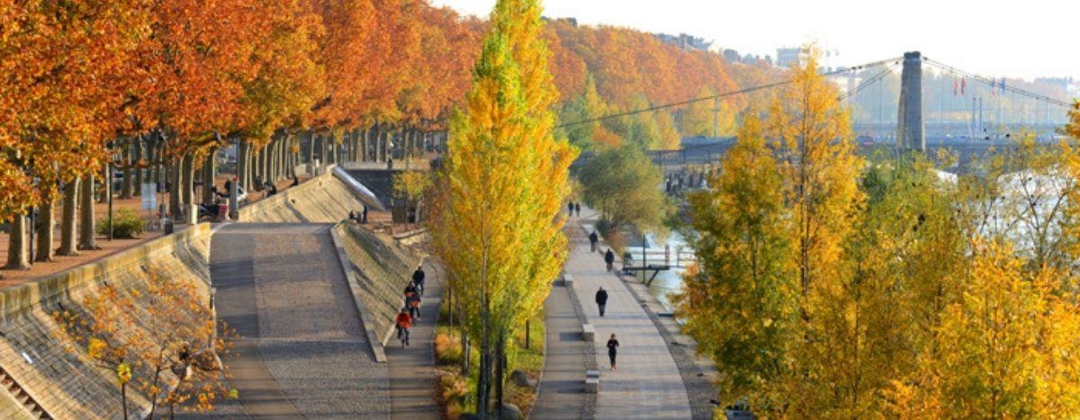 Image for Lyon : la transition verte est-elle en route ?