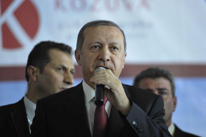 Image for Turkey: Erdoğan strikes back