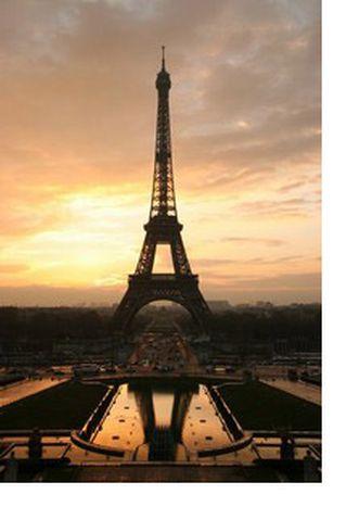 Image for Paris ou la vie en rose