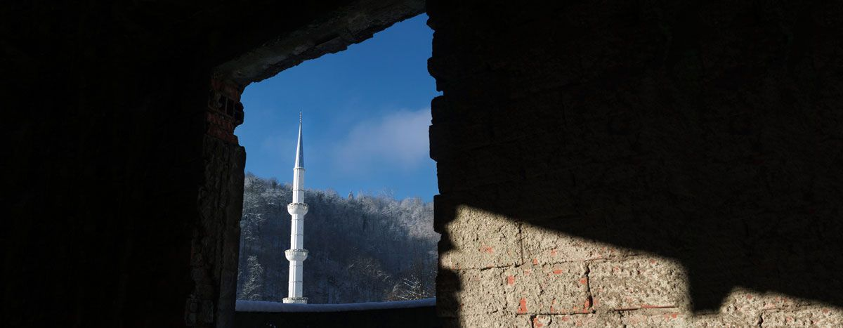 Image for Srebrenica: A city fighting for its future