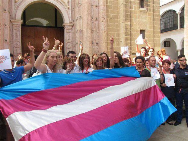 Image for Transexualidad en España: una cuestión de derechos