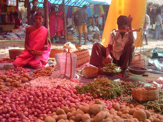 Image for UNO in Doha: Die Früchte der Nord-Süd-Solidarität am Beispiel Indien