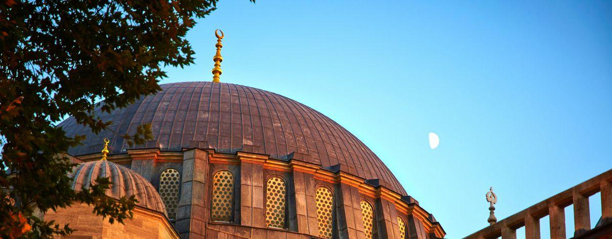Image for Erasmus ad Istanbul: «I migliori anni della nostra vita»
