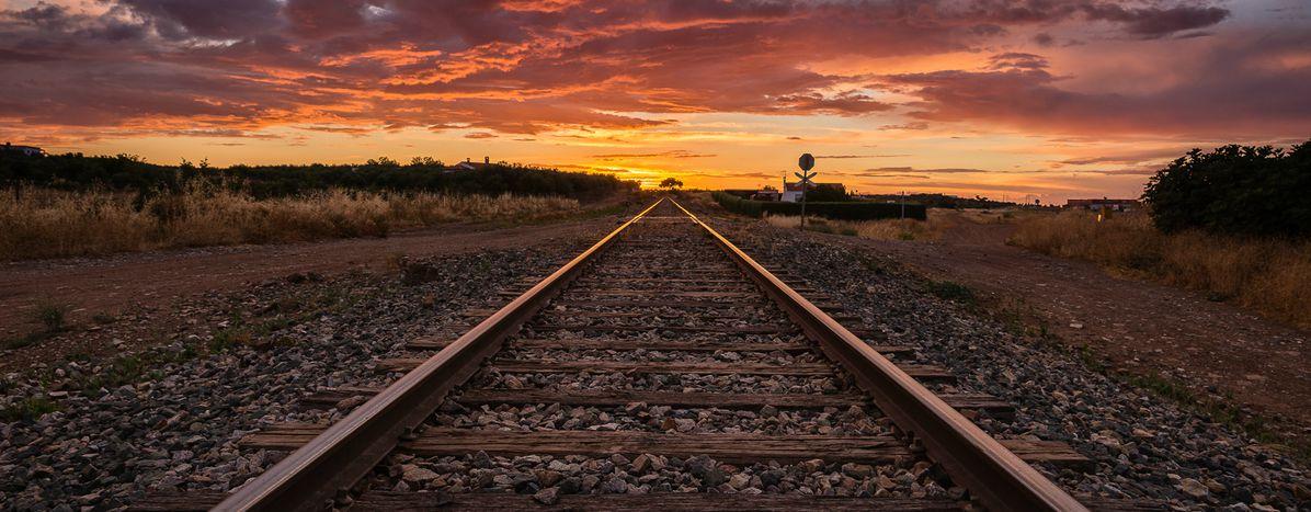 Image for (Nie)ludzkie błędy stojąceza katastrofą kolejową w Apulii