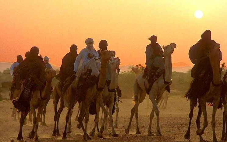 Image for Sahel: tra terrorismo e traffico di cocaina, l'Europa deve reagire