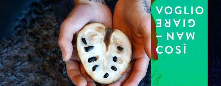 Image for Frutarisme: le futur est-il dans le fruit?