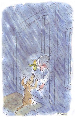 Image for Auf den Hund gekommen