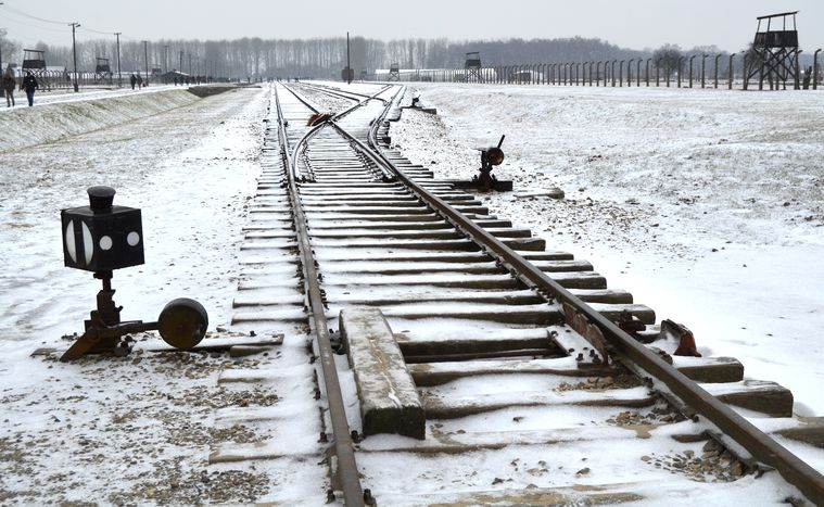 Image for Auschwitz : contre l'oubli