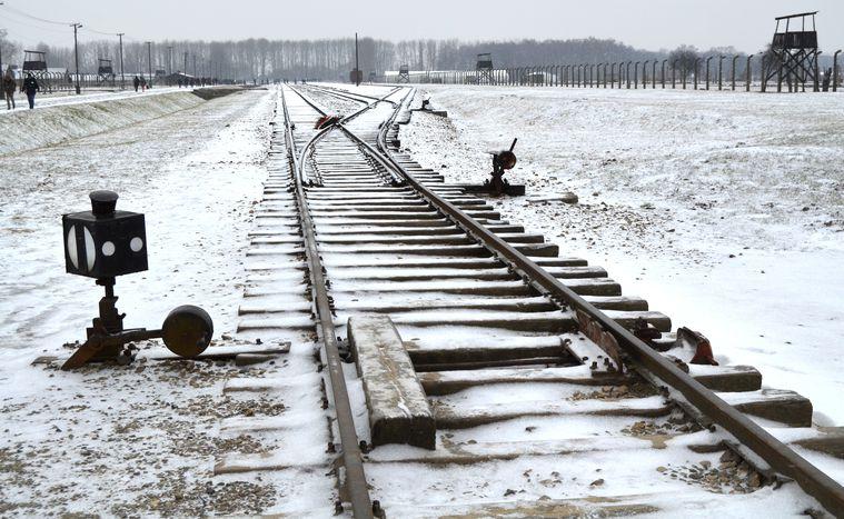 Image for Auschwitz, un viaggioper non dimenticare