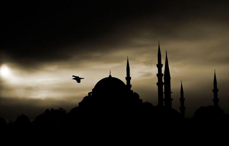 Image for Attentats à Istanbul : les faucons noirs