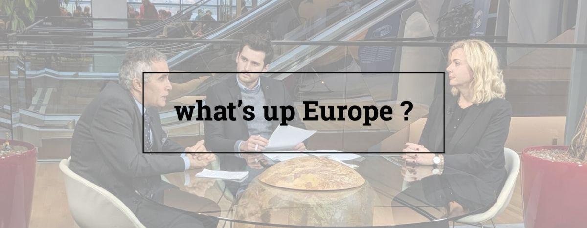 Image for L'élargissement de l'Union européenne : oui, non ?