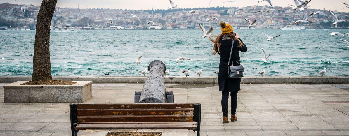Image for Erasmus en Estambul: la universidad, la moda y la vida