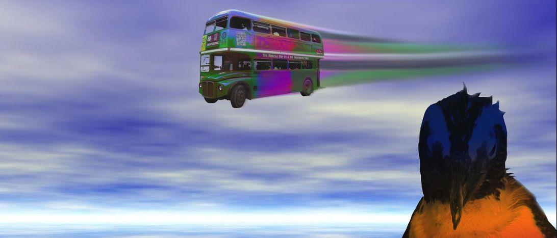 Image for Megabus:a bordo del pullman low cost che avvicina l'Europa