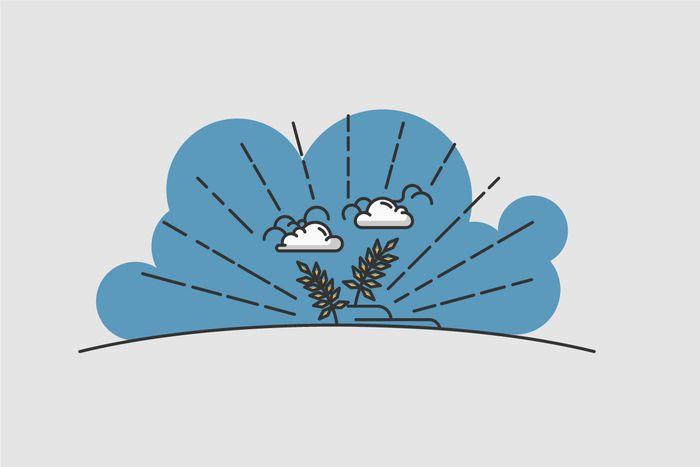 Image for Fonds européens : le bonheur est dans le blé