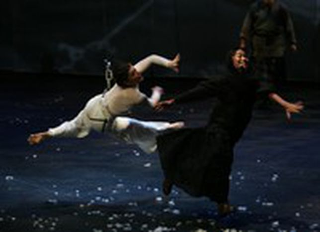 Image for In Europe's opera wings