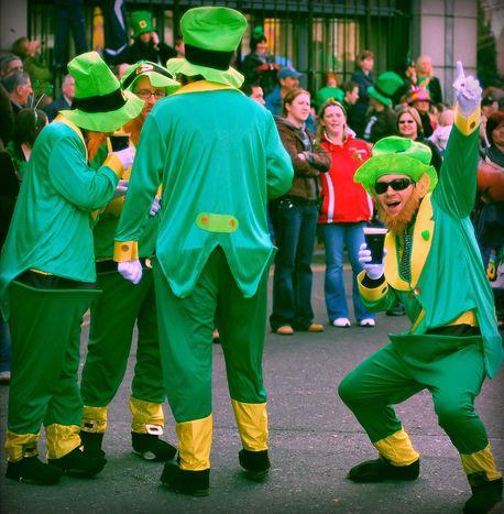 Image for St. Patrick's Day: Das Kleeblatt in Dublin ertränken