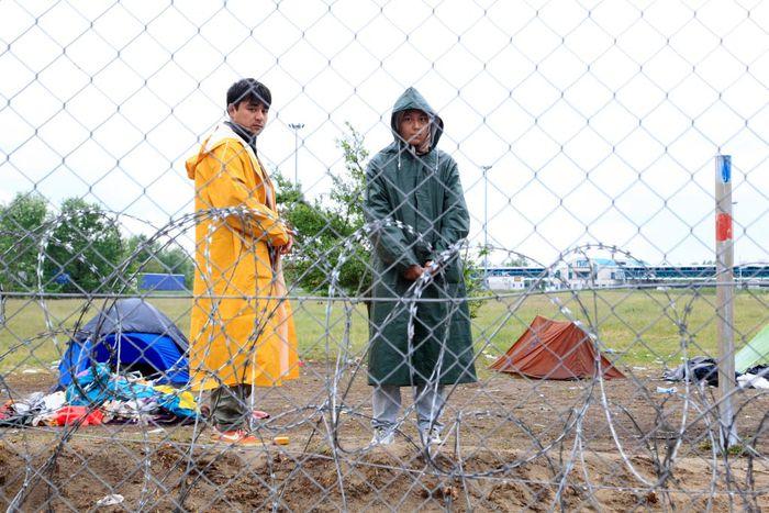 Image for Hongrie : tous les immigrants sont les bienvenus ?