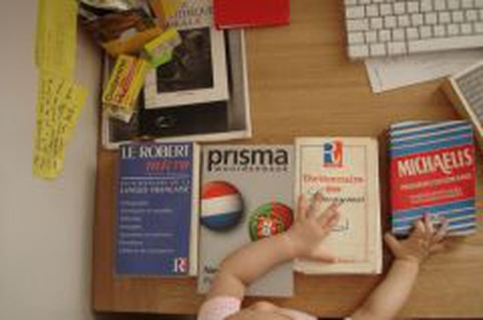 Image for Promotion of multilingualism in Europe