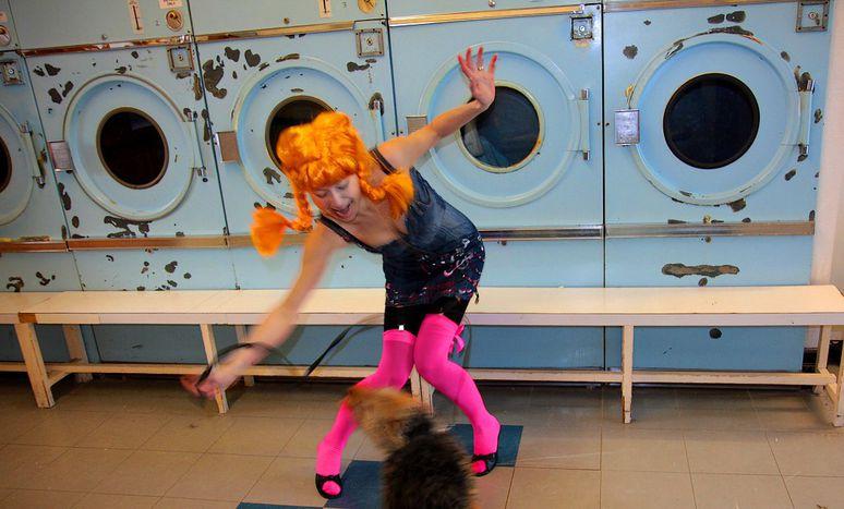 Image for Café-lavanderías: bebe, lava y baila