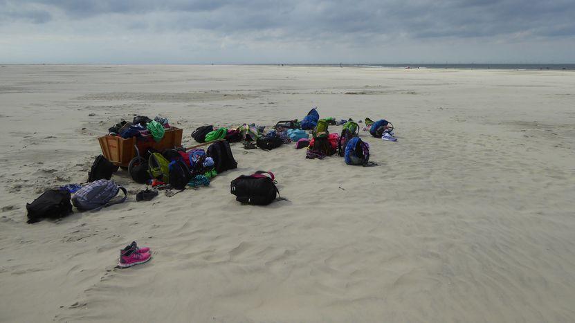 Image for Italie : comment éviter le pillage des plages de Sardaigne ?