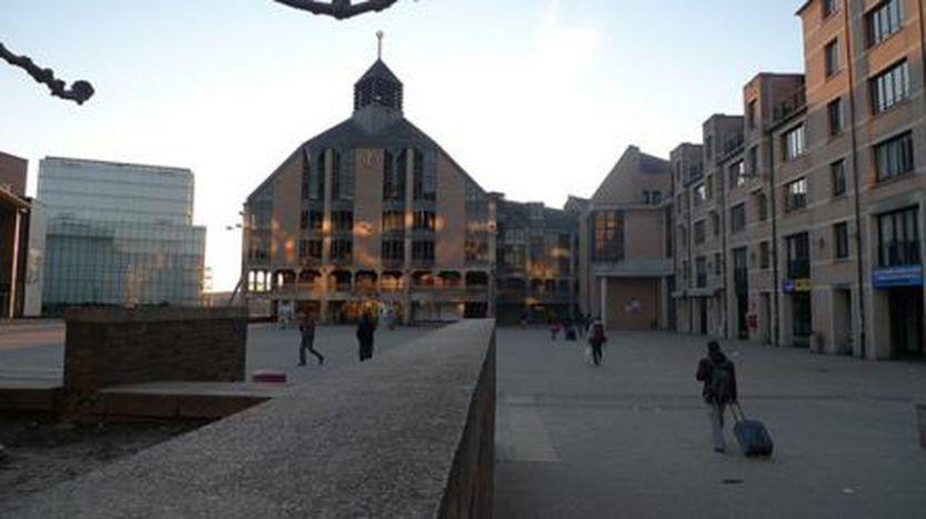 Image for Louvain-la-Neuve : 40 ans de hasard écologique