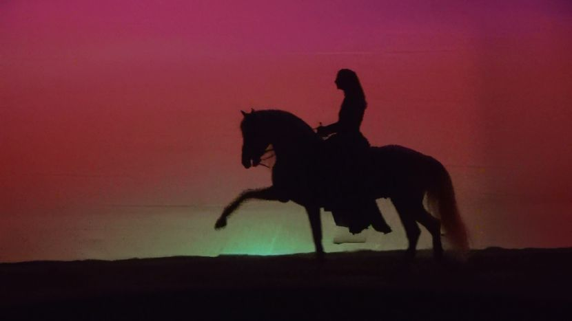 Image for CAVALIA:Le spectacle qui vous transportera dans des univers incroyables…