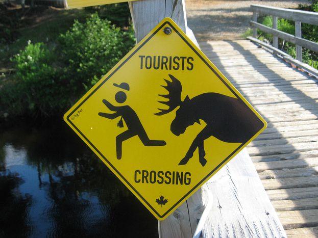 Image for Hilfe, die Touristen kommen!