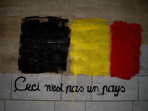 Image for La politique linguistique en Flandre: surréalisme à la belge