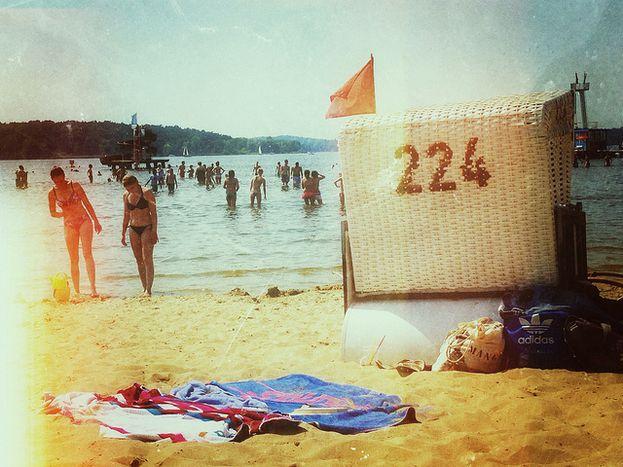 Image for Playlist Der Woche: Pack die Badehose ein
